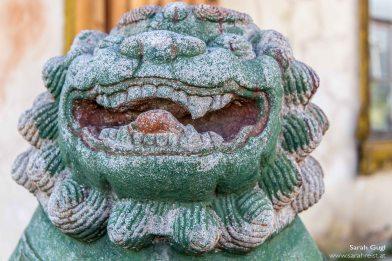 Einer der Löwen, welche den Eingang des Wohnhauses bewachen.