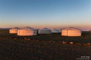 Das Ger-Camp im Morgenlicht